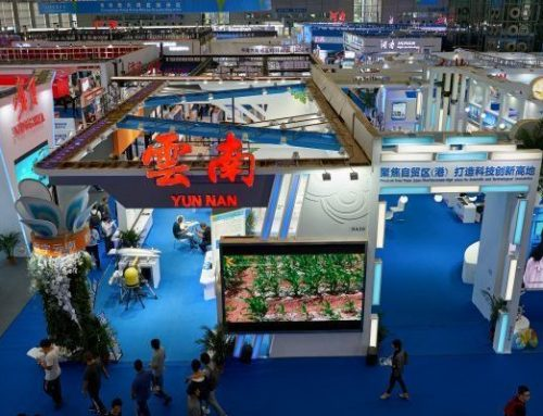 International Import Expo – Shanghai